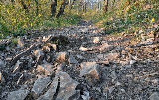 Parcours Bozouls Trail d'Aqui est l'espace trail de la Communauté de Communes Comtal Lot Truyère. 21 parcours (Bessuéjouls, Bozouls, Campuac, Coubisou, Entraygues, Espalion, Espeyrac, Estaing, Gabriac, Golinhac, La Loubière, Lassouts, Le Cayrol, Le Fel, Le Nayrac, Montrozier, Rodelle, Saint-Côme-d'Olt, Saint-Hippolyte, Sébrazac, Villecomtal) et 2 parcours demi-kilomètre vertical permettent de découvrir plus de 500 kilomètres de chemins et monotraces.