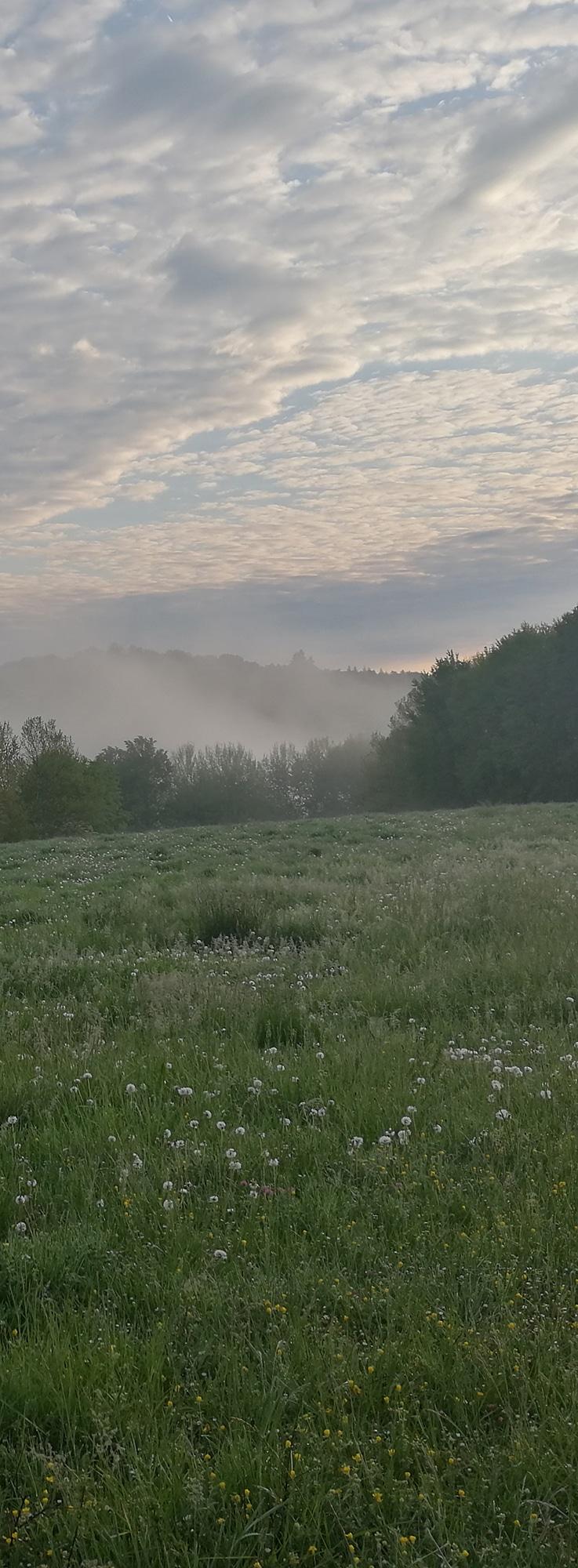 Parcours Campuac Trail d'Aqui est l'espace trail de la Communauté de Communes Comtal Lot Truyère. 21 parcours (Bessuéjouls, Bozouls, Campuac, Coubisou, Entraygues, Espalion, Espeyrac, Estaing, Gabriac, Golinhac, La Loubière, Lassouts, Le Cayrol, Le Fel, Le Nayrac, Montrozier, Rodelle, Saint-Côme-d'Olt, Saint-Hippolyte, Sébrazac, Villecomtal) et 2 parcours demi-kilomètre vertical permettent de découvrir plus de 500 kilomètres de chemins et monotraces.