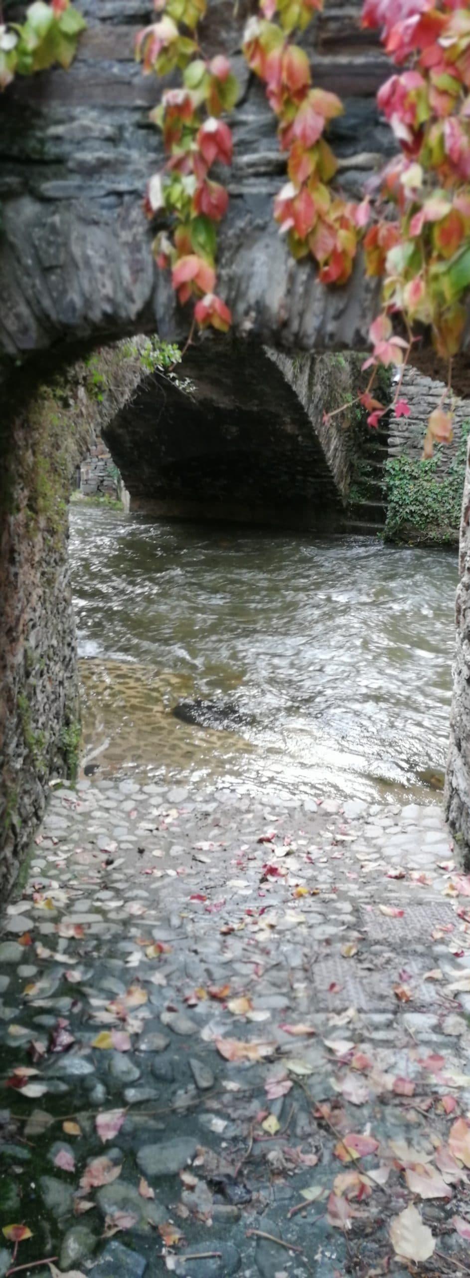 Parcours Estaing Trail d'Aqui est l'espace trail de la Communauté de Communes Comtal Lot Truyère. 21 parcours (Bessuéjouls, Bozouls, Campuac, Coubisou, Entraygues, Espalion, Espeyrac, Estaing, Gabriac, Golinhac, La Loubière, Lassouts, Le Cayrol, Le Fel, Le Nayrac, Montrozier, Rodelle, Saint-Côme-d'Olt, Saint-Hippolyte, Sébrazac, Villecomtal) et 2 parcours demi-kilomètre vertical permettent de découvrir plus de 500 kilomètres de chemins et monotraces.