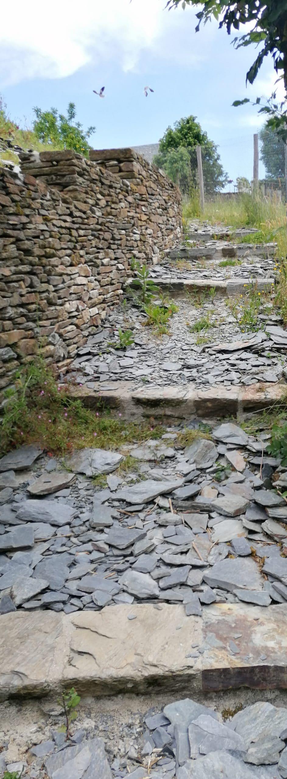 Parcours Le Cayrol Trail d'Aqui est l'espace trail de la Communauté de Communes Comtal Lot Truyère. 21 parcours (Bessuéjouls, Bozouls, Campuac, Coubisou, Entraygues, Espalion, Espeyrac, Estaing, Gabriac, Golinhac, La Loubière, Lassouts, Le Cayrol, Le Fel, Le Nayrac, Montrozier, Rodelle, Saint-Côme-d'Olt, Saint-Hippolyte, Sébrazac, Villecomtal) et 2 parcours demi-kilomètre vertical permettent de découvrir plus de 500 kilomètres de chemins et monotraces.