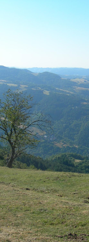 Parcours demi-kilomètre vertical Entraygues Trail d'Aqui est l'espace trail de la Communauté de Communes Comtal Lot Truyère. 21 parcours (Bessuéjouls, Bozouls, Campuac, Coubisou, Entraygues, Espalion, Espeyrac, Estaing, Gabriac, Golinhac, La Loubière, Lassouts, Le Cayrol, Le Fel, Le Nayrac, Montrozier, Rodelle, Saint-Côme-d'Olt, Saint-Hippolyte, Sébrazac, Villecomtal) et 2 parcours demi-kilomètre vertical permettent de découvrir plus de 500 kilomètres de chemins et monotraces.